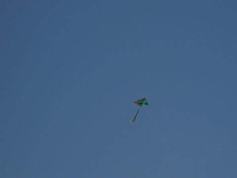 Green_kite
