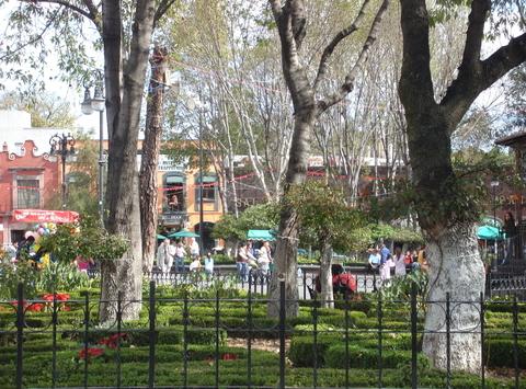 Park_near_frida